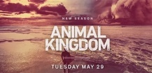 Animal Kingdom Saison 3 : trailer officiel pour la nouvelle saison